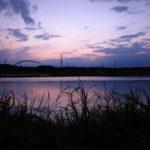 池と見まがう水田の美しさ――加東市